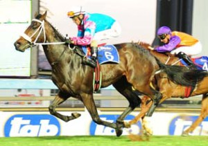 KZN-bred Entries: Summer Cup Day At Turffontein