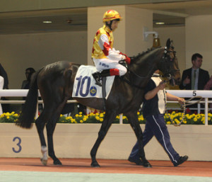 KZN-Bred Monsieur Mogok Wins In Hong Kong