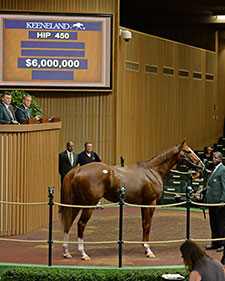 Giant's Causeway Filly Tops Keeneland Sale At $6 Million