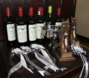 Trophies, rosettes and prizes. Image: Candiese Marnewick