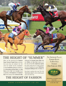 Summerhill's Summer Ready To Run Sale