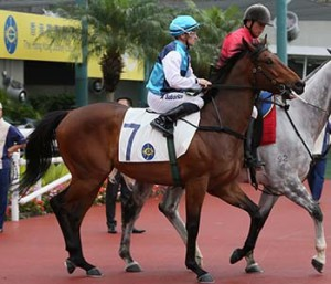 Lovely Naughty Gets Third Hong Kong Win For Kahal