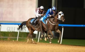 KZN-Bred Alareef Opens Dubai Winning Account