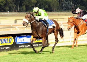KZN Breeders Series - First Log For 3YO's And Up