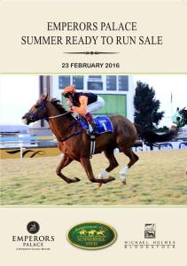 Online Catalogue: Emperors Palace Summer Ready To Run Sale