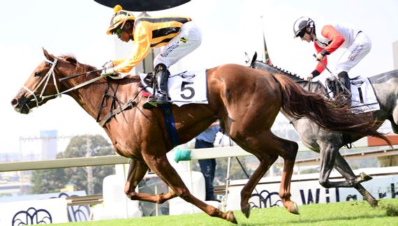 Visionaire Filly Wins Gr2 Gauteng Fillies Guineas For Mr Moloi