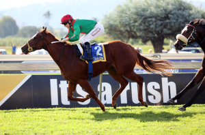 Royal Pleasure winning the Gr3 Strelitzia at Scottsville. Image: Gold Circle
