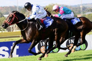 KZN 1-2 In Drum Star Listed; Romany Prince 2500th Winner For Ferraris