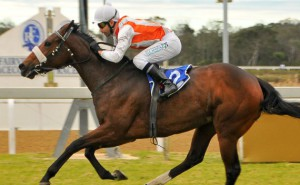 KZN-Breds Feature In Eastern Cape Racing Awards