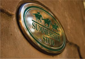 Summerhill Celebrate 10th National Leading Breeder Title