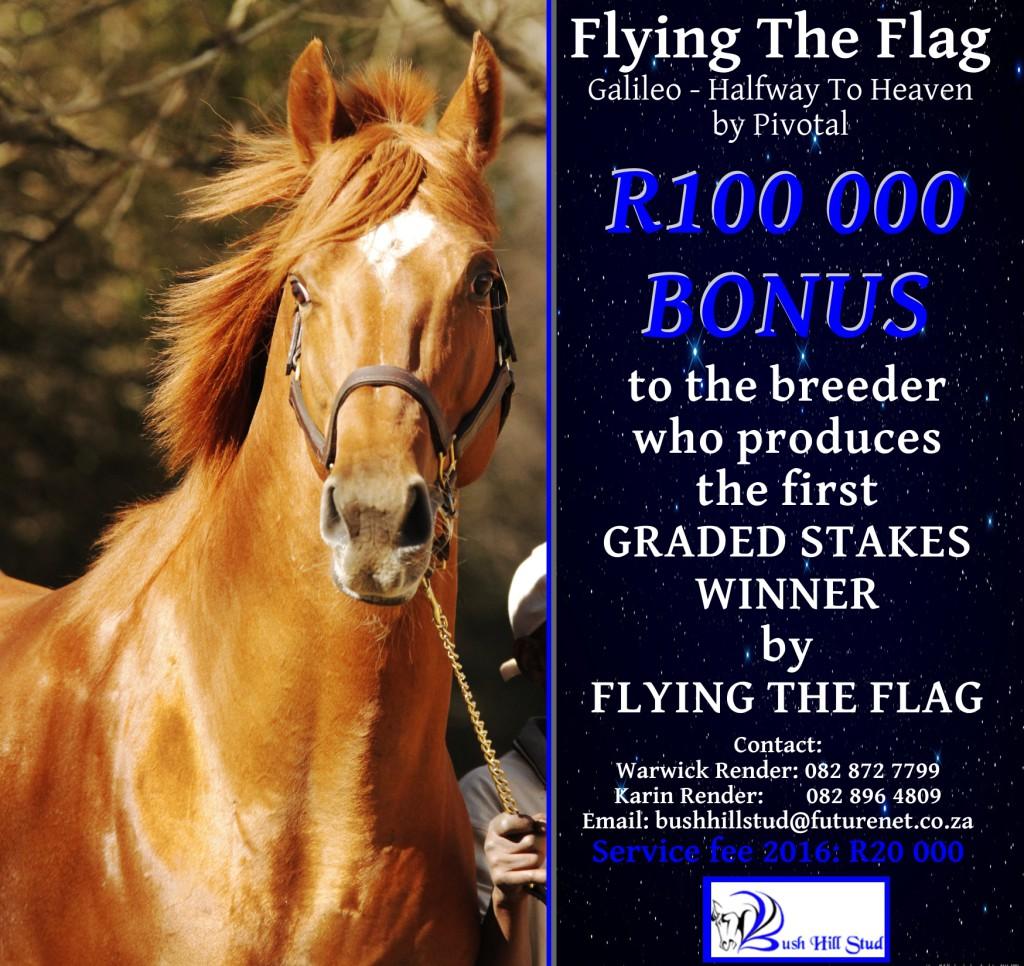 flying-the-flag-100