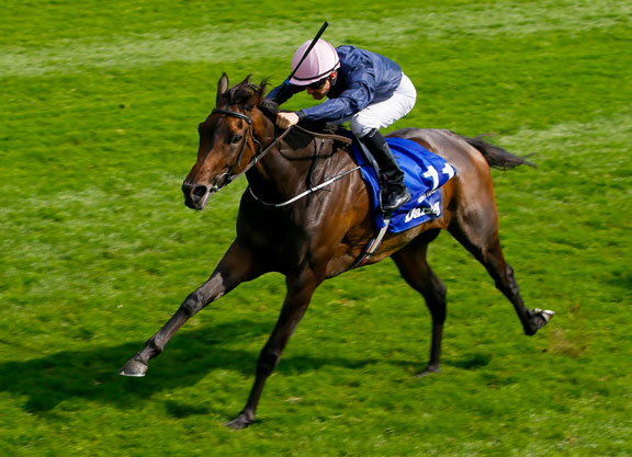 Seventh Heaven is a dual Gr1 winner, half-sister to Crusade. She contests the Gr1 Arc De Triomphe today.