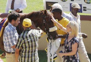 Yellow Star's Panza Leads First KZN Breeders Series Log For 3YO's And Up