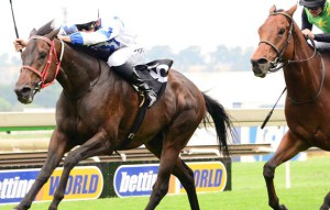Gr3 Win For KZN's Romany Prince