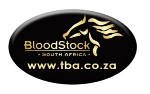 Bloodstock South Africa Announce Maiden Winner Incentive