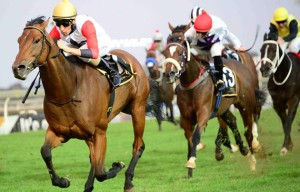 KZN Horses Take Home Three Stakes Wins At Turffontein