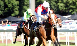 Feature Success For KZN On Weekend At Turffontein