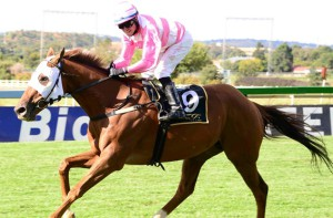 KZN-Bred The Elmo Effect Wins Drum Star Listed