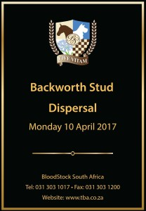Backworth Stud Dispersal Sale: 10 April