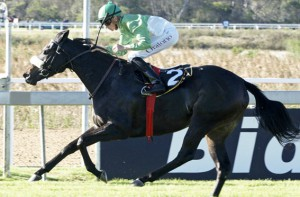 Mogok Filly Wins East Cape Oaks Listed