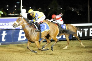 Curved Ball Filly Breaks Class Record At Greyville