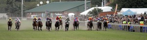 The 2017 Vodacom Durban July Entries