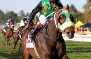 Normanz-wins-the-Golden-Horse-Sprint-2014_compressed