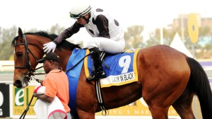 Rathmor Broodmare Gets Gr1 Victory At Greyville