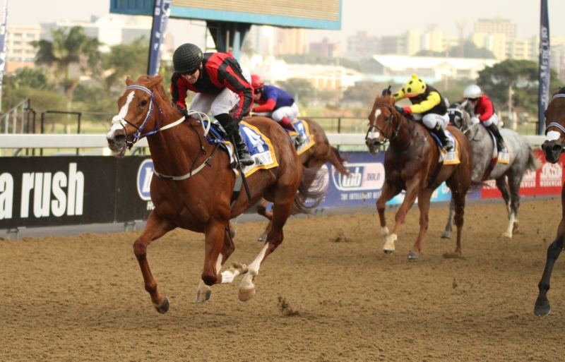 Wukkin' Up winning the Off To Stud Listed at Greyville on Saturday. Image: Candiese Marnewick