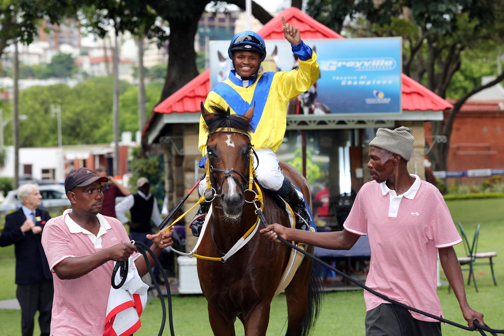 The handsome and well bred Jayyed returns to the winners enclosure at Greyville in January 2016.