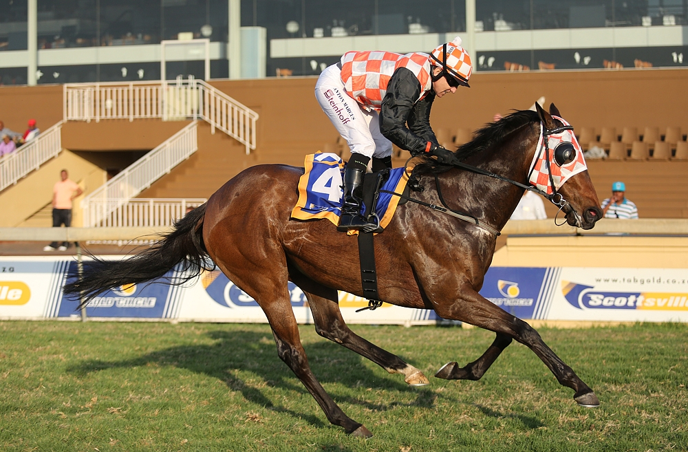 Lady Starlett, a five time winning full sister to Talktothestars wins going away at Scottsville. Image: Candiese Marnewick