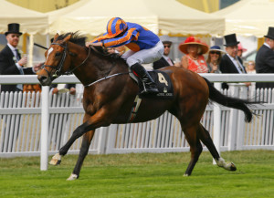 Gleneagles pictured. He is by Galileo out of a full sister to Giant's Causeway.  ©cranhamphoto.com