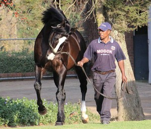 A Wave For Mogok In Scottsville Double