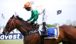KZN-Bred Run Rhino Run Shocks With 21 Length Win