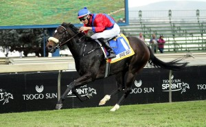 KZN-Bred Gr1 Winner Headed To France For Team Valor