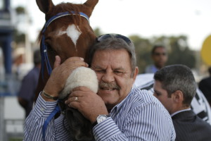 No Worries For Summerhill Stud