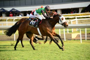Five Group Winning KZN-Breds Feature In Highveld Awards