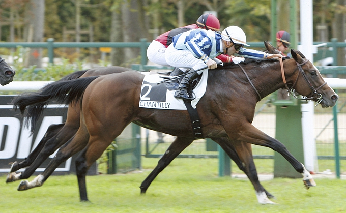 Eightfold Path wins a French Gr3.