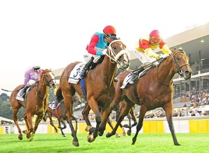 Love Struck winning his Gr1 at Turffontein. He has a Capetown Noir sibling from Summerhill Stud on offer.