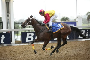 Backworth-bred Crusade Filly Impresses On Debut, Eightfold Path Filly Flies