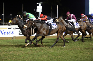Rabada winning the Gr1 Daily News 2000. He has a Trippi half-brother on offer from Summerhill Stud.