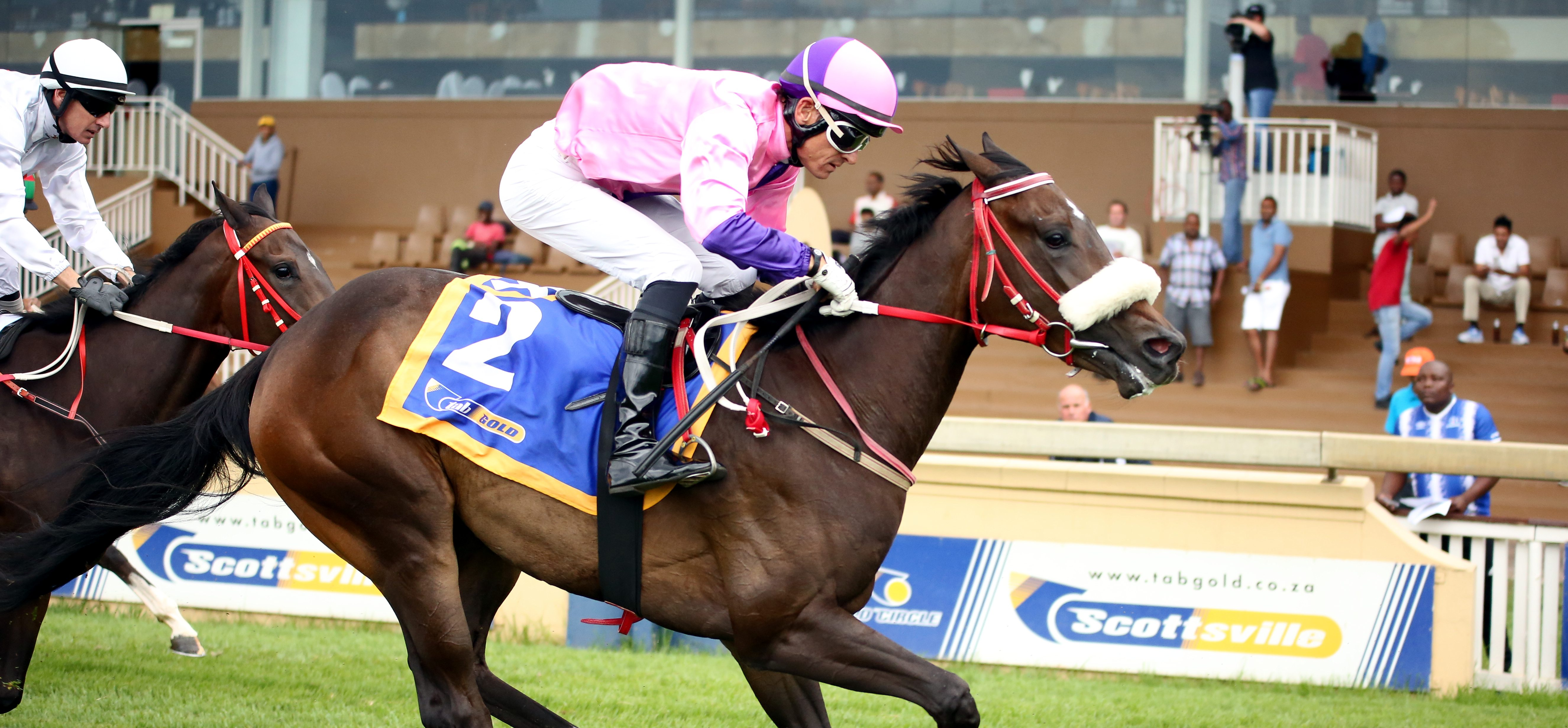 The first winner for Noble Tune, the juvenile filly Awesomely Tuned. Image: Candiese Marnewick
