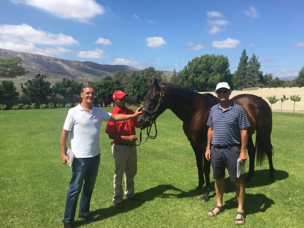 Tinus Gericke and Bruce Le Roux with Dynasty. Image: Higlands Farm Part Of Ridgemont