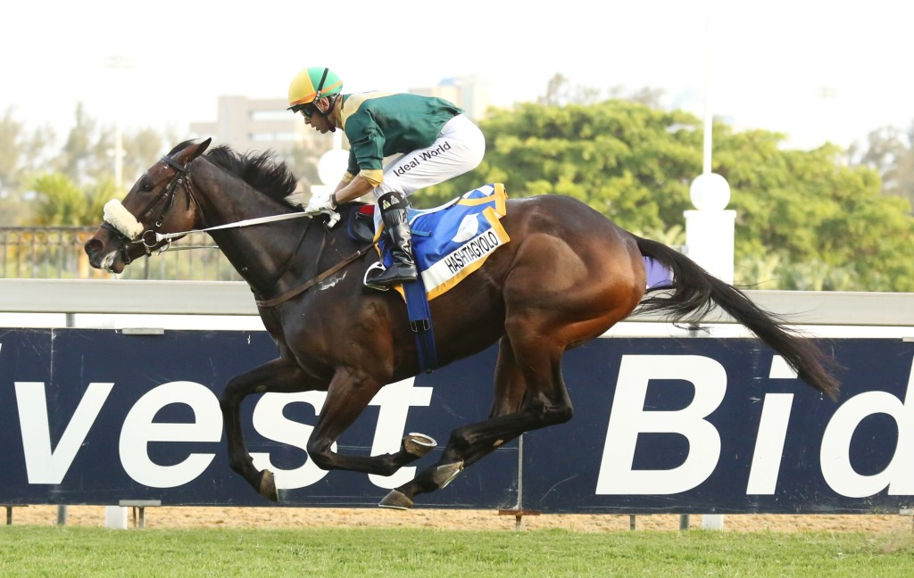 Hashtagyolo winning the KZN Fillies Guineas Trial Listed. Image: Candiese Lenferna