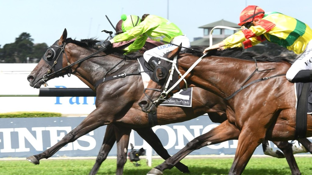 More Energy wins the Listed Parramatta Cup.