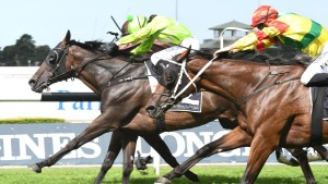 Redoute's Promise Half-Brother Wins Listed Parramatta Cup