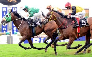 Dawn Assault Heads Up 2nd KZN Breeders Series Log - 3YO's And Up