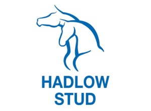 Hadlow Stud At National 2YO Sale