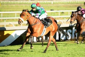 Takingthepeace Makes KZN Proud To Nab Gr1 SA Fillies Classic