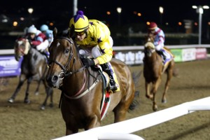 Son Of Irish Flame To Contest Gr1 Daily News 2000